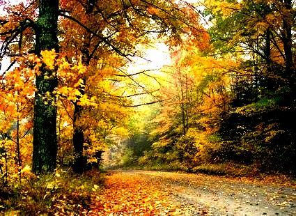 Чем хорош октябрь