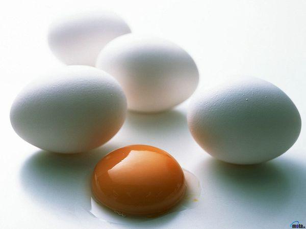 Чем отличаются коричневые яйца от белых