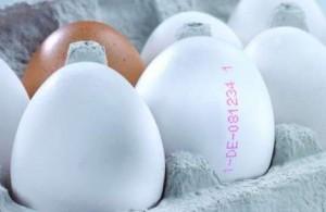 Маркировка на яйцах