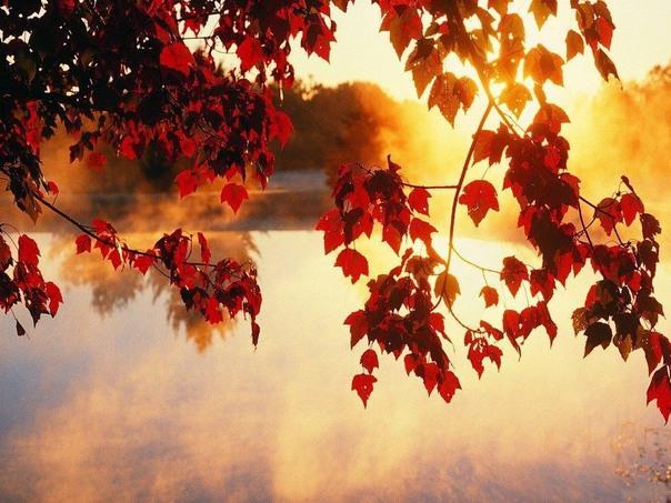 Какие праздники стоит отметить в сентябре?