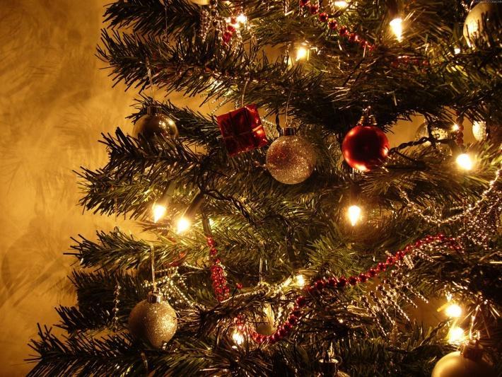Выбрасываем елку после праздников